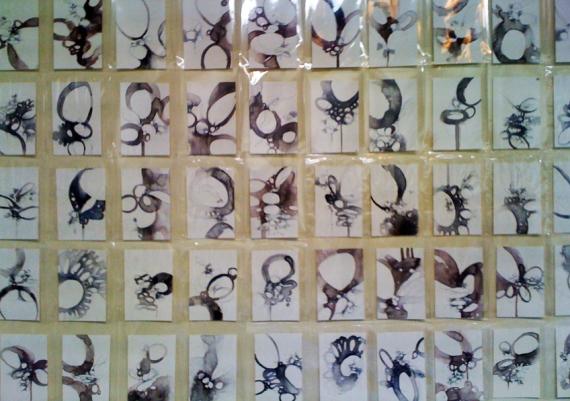 specimen drawing group