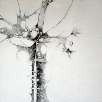 presage drawing #11