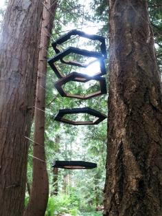 Ways to Speak With Trees_s.humston